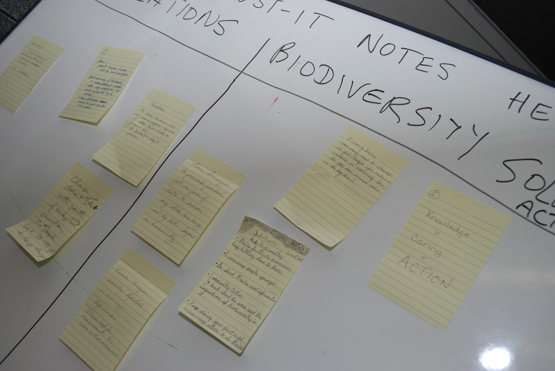 Participant Board