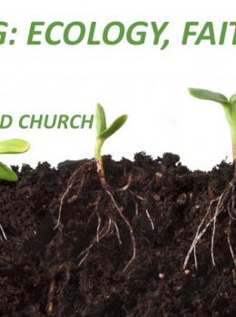 Grounding: Ecology, Faith, Hope Workshop